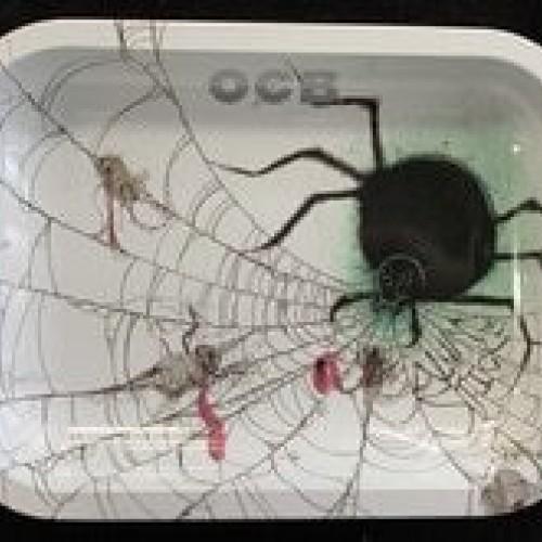 OCB Rolling Tray: Spider